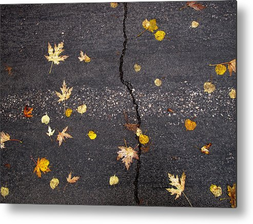 Maple Leaves Metal Print featuring the photograph Crack 2 by Lyle Crump