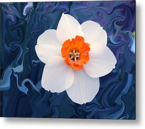 Flower Metal Print featuring the photograph Daffodill In Blue by Jim Darnall