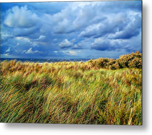 Nature Metal Print featuring the photograph Danish Landscape by Anthony Dezenzio