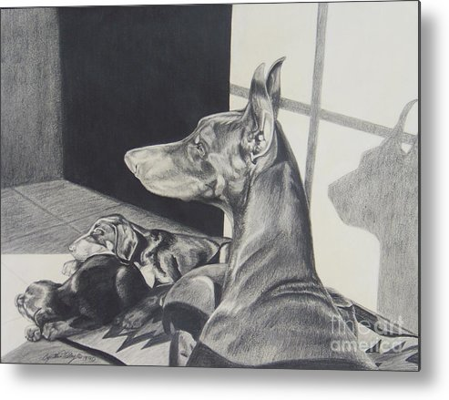 Doberman Metal Print featuring the drawing Day Dreams by Cynthia Riley