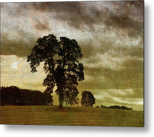 Mixed Media Print Metal Print featuring the photograph Daybreak by Bonnie Bruno