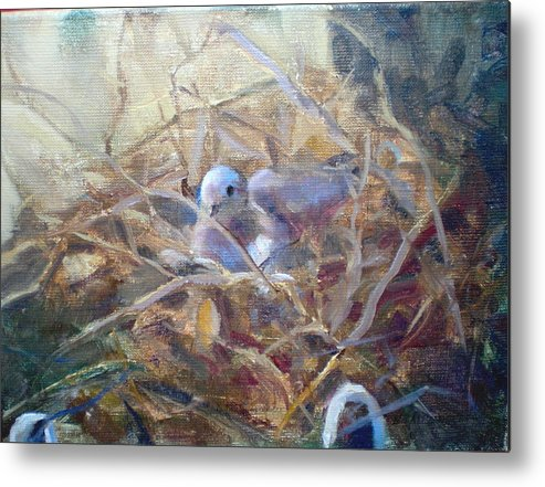 Dove Planter Nest Earth Colors Metal Print featuring the painting Dove Nesting by Bryan Alexander