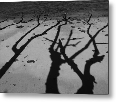 Shadows Metal Print featuring the photograph Dunk Island Australia 174 by Per Lidvall