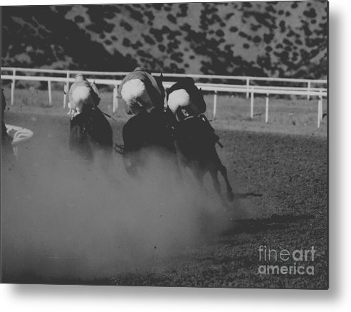 Horse Metal Print featuring the photograph Dust And Butts by Kathy McClure