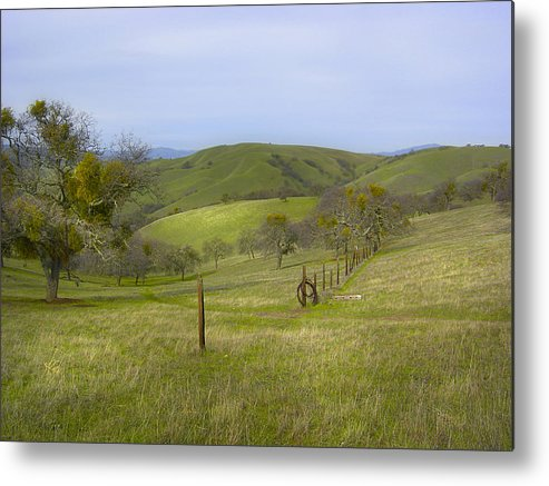 Landscape Metal Print featuring the photograph East Ridge Trail Barbed Wire by Karen W Meyer