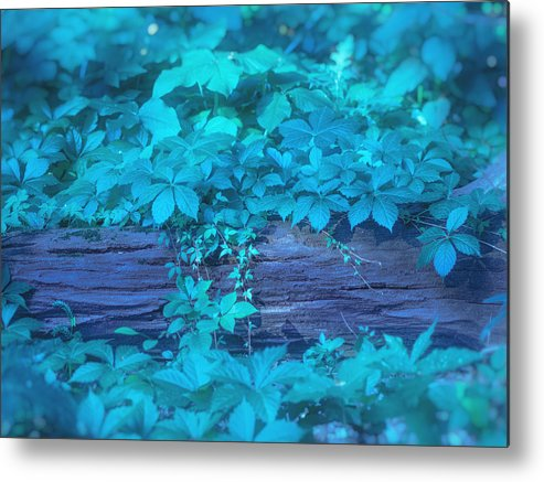 Aqua Metal Print featuring the digital art Eternal Embrace by Will Jacoby Artwork