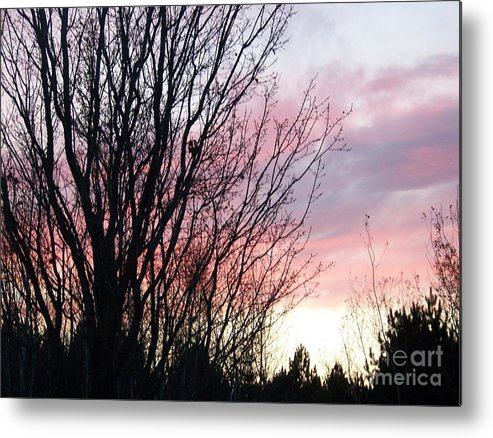 Sky Metal Print featuring the photograph Evening Sky - October 27 by Jackie Mueller-Jones