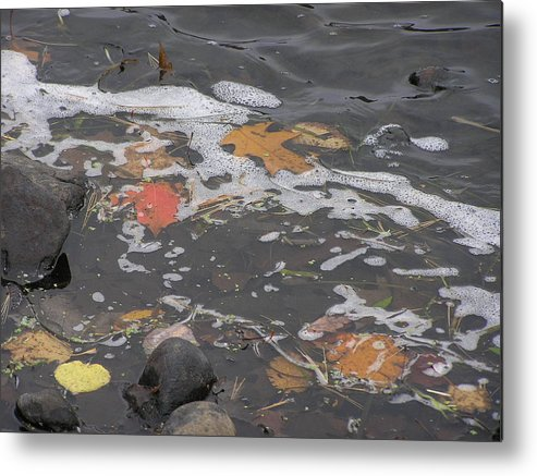 Leaves Metal Print featuring the photograph Fall Leaves Floating On The River by Alice Markham