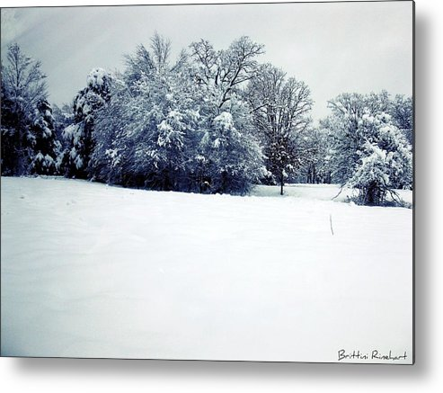 Snow Metal Print featuring the photograph February 2010 Snow II by Brittini Rinehart