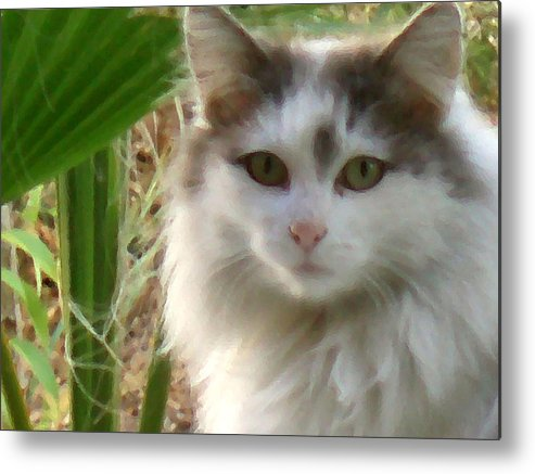 Cats Metal Print featuring the digital art Fluffy by Eric Forster