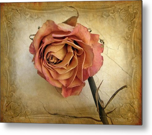 Flower Metal Print featuring the photograph For You by Jessica Jenney