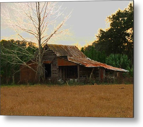 Old Metal Print featuring the photograph Forgotten Dreams by Judy Waller