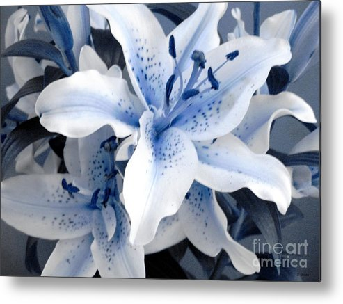 Blue Metal Print featuring the photograph Freeze by Shelley Jones
