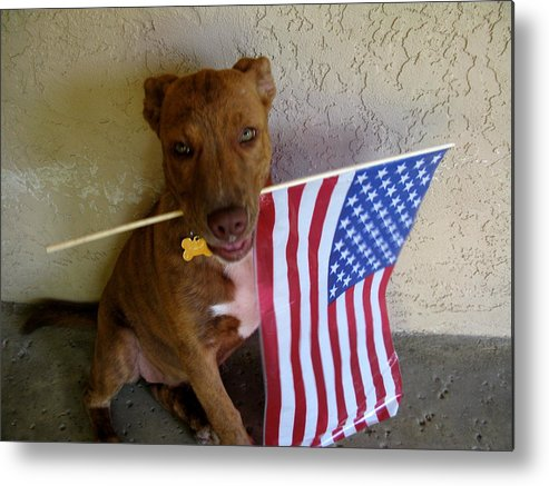 July 4th Metal Print featuring the photograph God Bless America by PJ Cloud