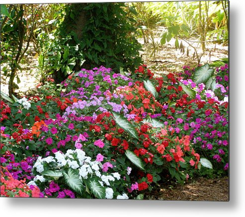 Flowers Metal Print featuring the photograph God Using His Paintbrush by Jeanette Oberholtzer