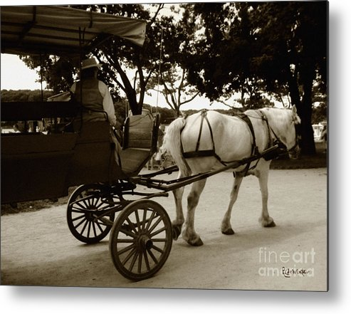 Driver Metal Print featuring the photograph Going Home by RC DeWinter
