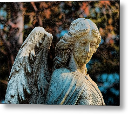 Cemeteries Metal Print featuring the photograph Guardian by Gary Shepard