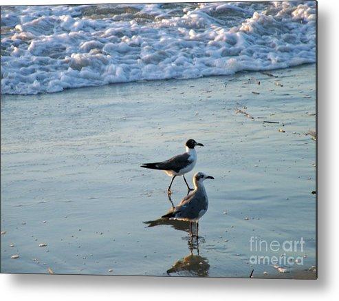 Gulls Metal Print featuring the photograph Gulls Strolling Tybee Island Beach by Doris Blessington