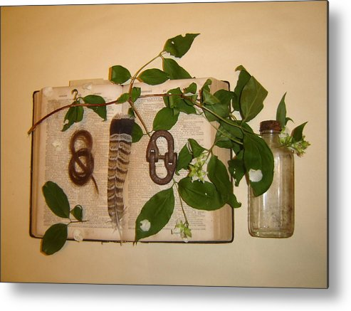 Still Life Metal Print featuring the photograph Hair Lock To June Flowering by Dean Corbin