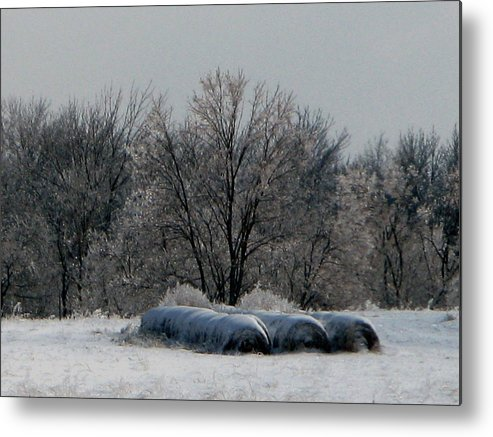 Nature Metal Print featuring the photograph Hay Bales by Martie DAndrea