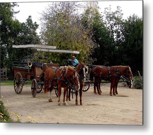 Colchagua Metal Print featuring the photograph Horse And Carriage by Brett Winn