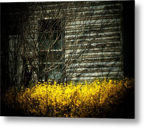Old House Metal Print featuring the photograph House Flowers by Michael L Kimble