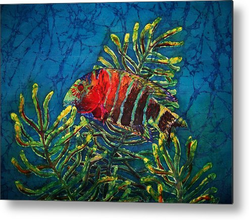 Fish Metal Print featuring the painting Hovering - Red Banded Wrasse by Sue Duda