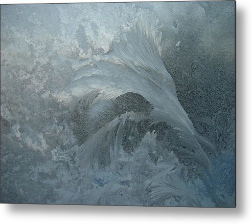 Nature Metal Print featuring the photograph Ice Crystals 1 by Eric Workman
