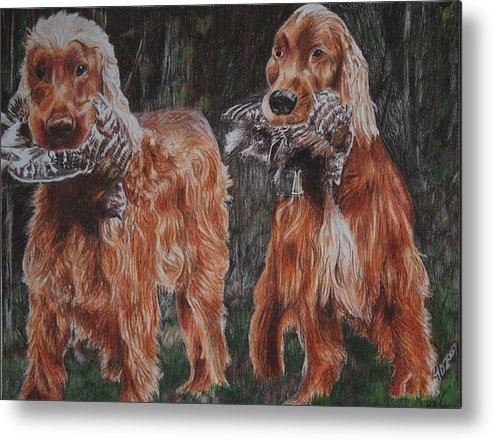 Dogs Metal Print featuring the drawing Irish Setters by Darcie Duranceau