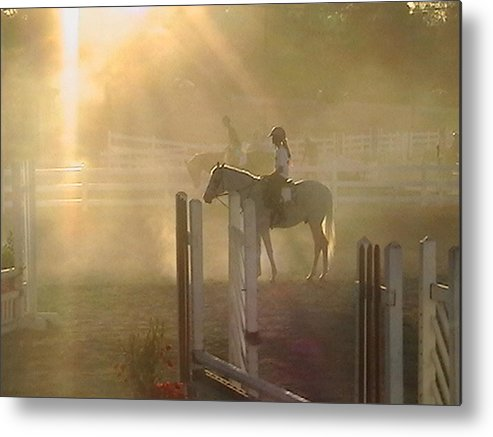 Horse Metal Print featuring the photograph It Is Almost Show Time by Donna Thomas