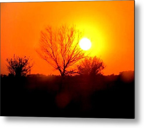 Sunset Metal Print featuring the photograph Kansas Sunset by Kara Trauger