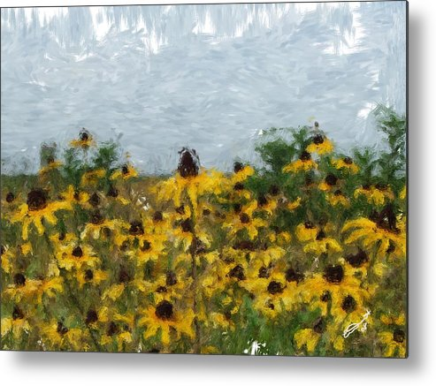 Field Black Yellow Flowers Green Painting Floral Daisies Garden Oil Eyed Impressionism Monet Metal Print featuring the painting Krystallyn's Susans by Eddie Durrett