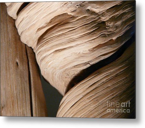 Wood Metal Print featuring the photograph Lean On Me by Donna McLarty