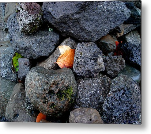 Nature Metal Print featuring the photograph Leaves And Stones by Marilynne Bull