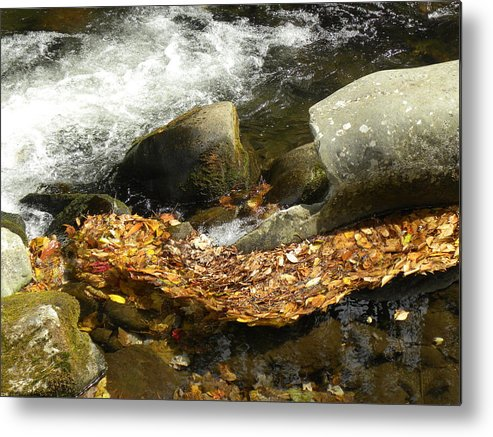 Fall Metal Print featuring the photograph Leaves Flowing-2 by Janet Dickinson