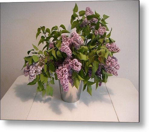 Lilacs Metal Print featuring the photograph Lilacs by Nancy Ferrier