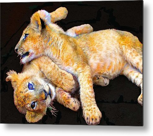 Lion Metal Print featuring the photograph Lion Wrestling by Michael Durst