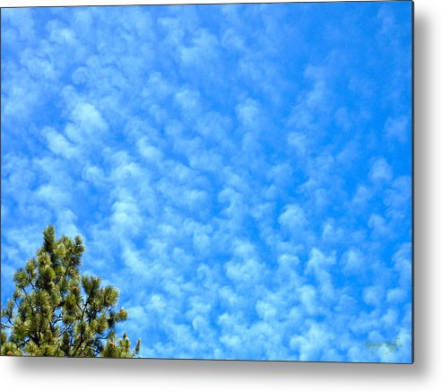 Tree Clouds Sky Colorado Zen Nature Simple Blue Rocky Mountains Metal Print featuring the photograph Little Clouds by George Tuffy