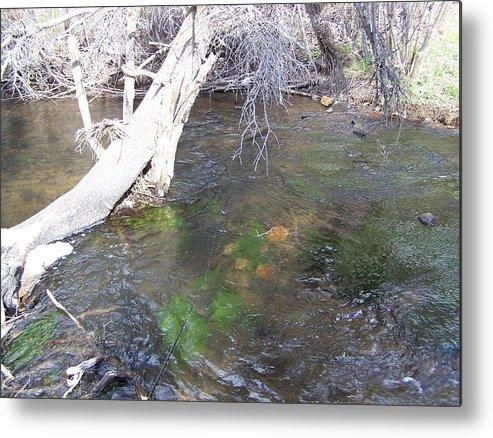 Little Colorado River Metal Print featuring the photograph Little Colorado River South Fork by Pamela Walrath