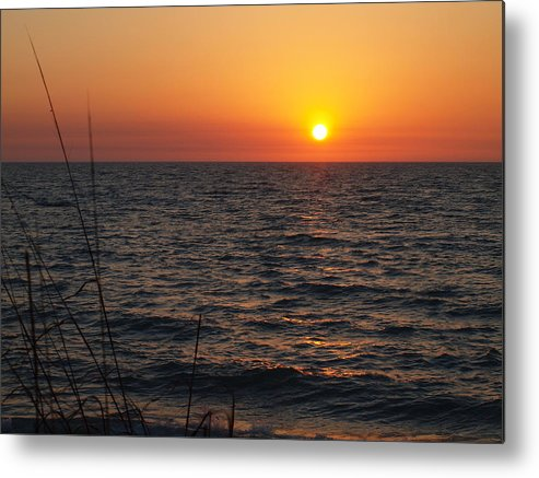 Florida Beaches Photographs Metal Print featuring the photograph Living The Life by Robert Margetts