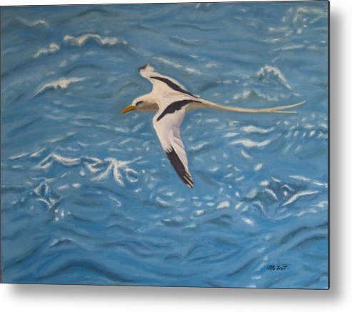 Bermuda Metal Print featuring the painting Longtail Over Water by Otto Trott
