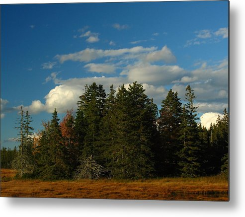 Landscape Metal Print featuring the photograph Maine Landscape Photography by Juergen Roth