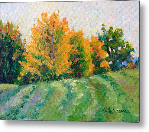 Impressionism Metal Print featuring the painting Maple Grove by Keith Burgess