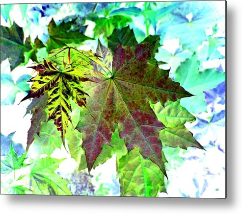 Maple Leaves Metal Print featuring the digital art Maple Mania 24 by Will Borden
