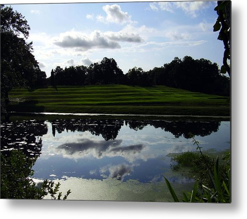 Middleton Place Metal Print featuring the photograph Middleton Place II by Flavia Westerwelle