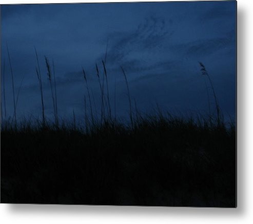 Metal Print featuring the photograph Midnight Motion 2 by Stacey May