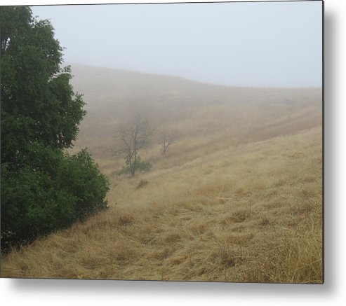 Landscape Metal Print featuring the photograph Misty Morning by Verna Pharo