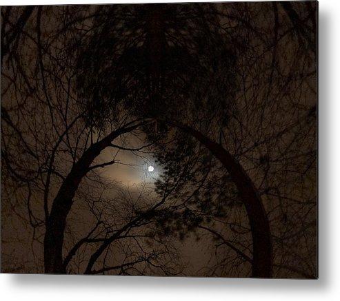 Lehtokukka Metal Print featuring the photograph Moonshine 14 The Trees by Jouko Lehto