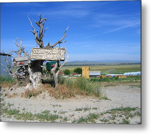 Mail Metal Print featuring the photograph Most Unusual Mailbox by Diane Wallace