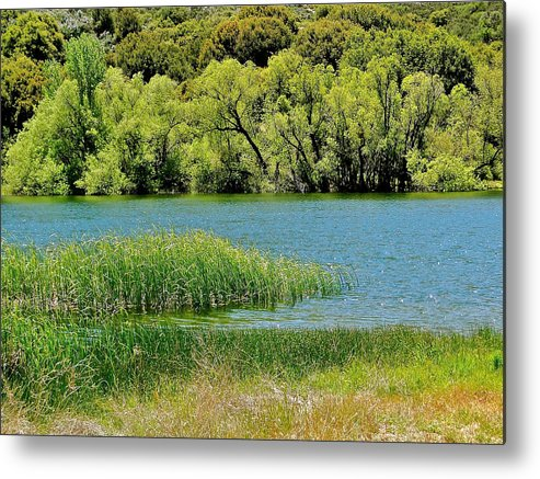 Lake Metal Print featuring the photograph Mountain Lake by Liz Vernand
